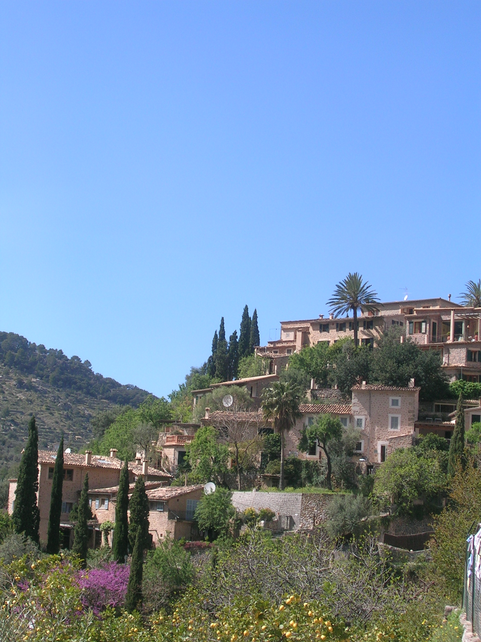 Post Thumbnail of Que visitar en Mallorca? Valldemosa