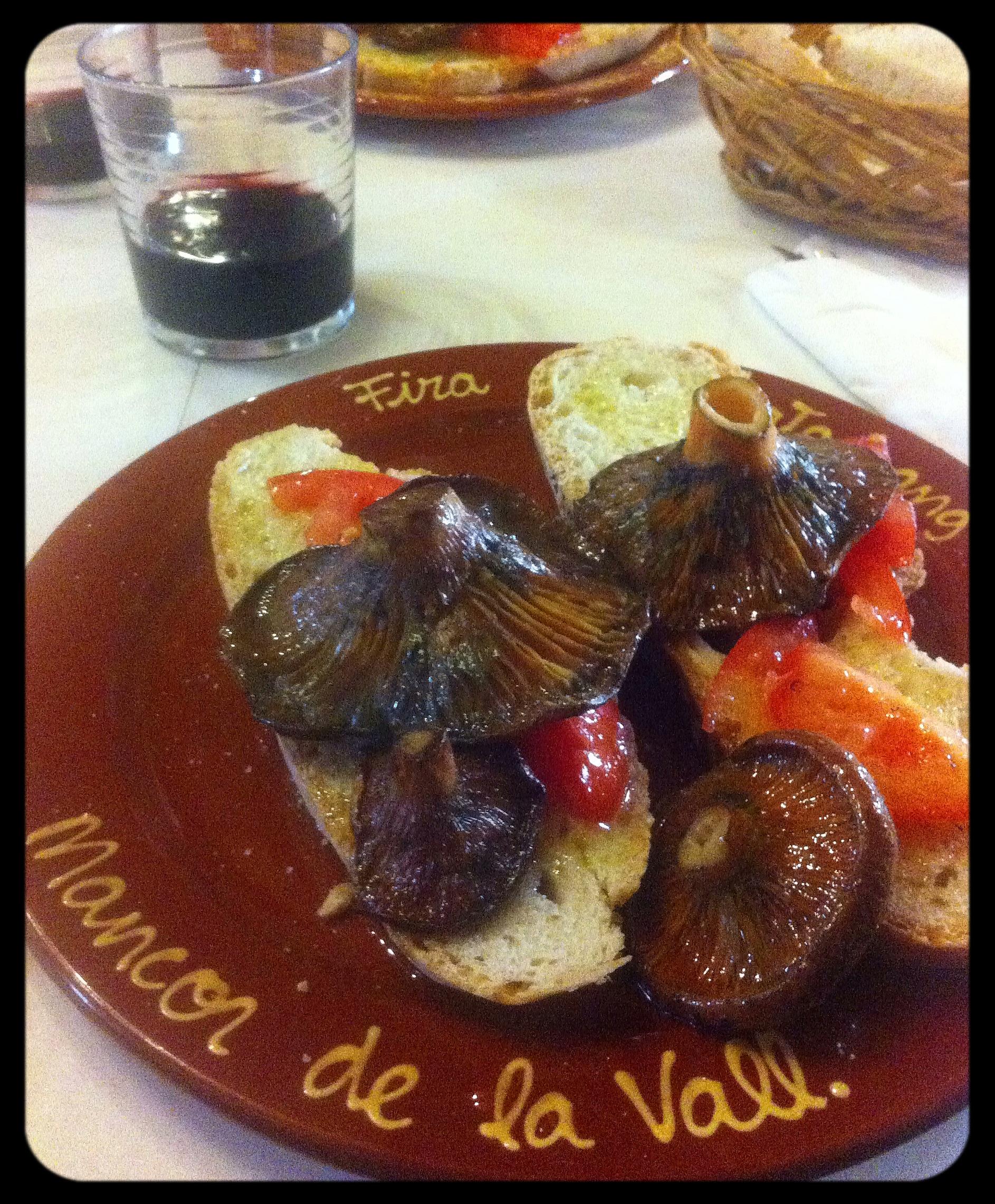 Post Thumbnail of Feria dels Esclatassangs en Mancor de la Vall