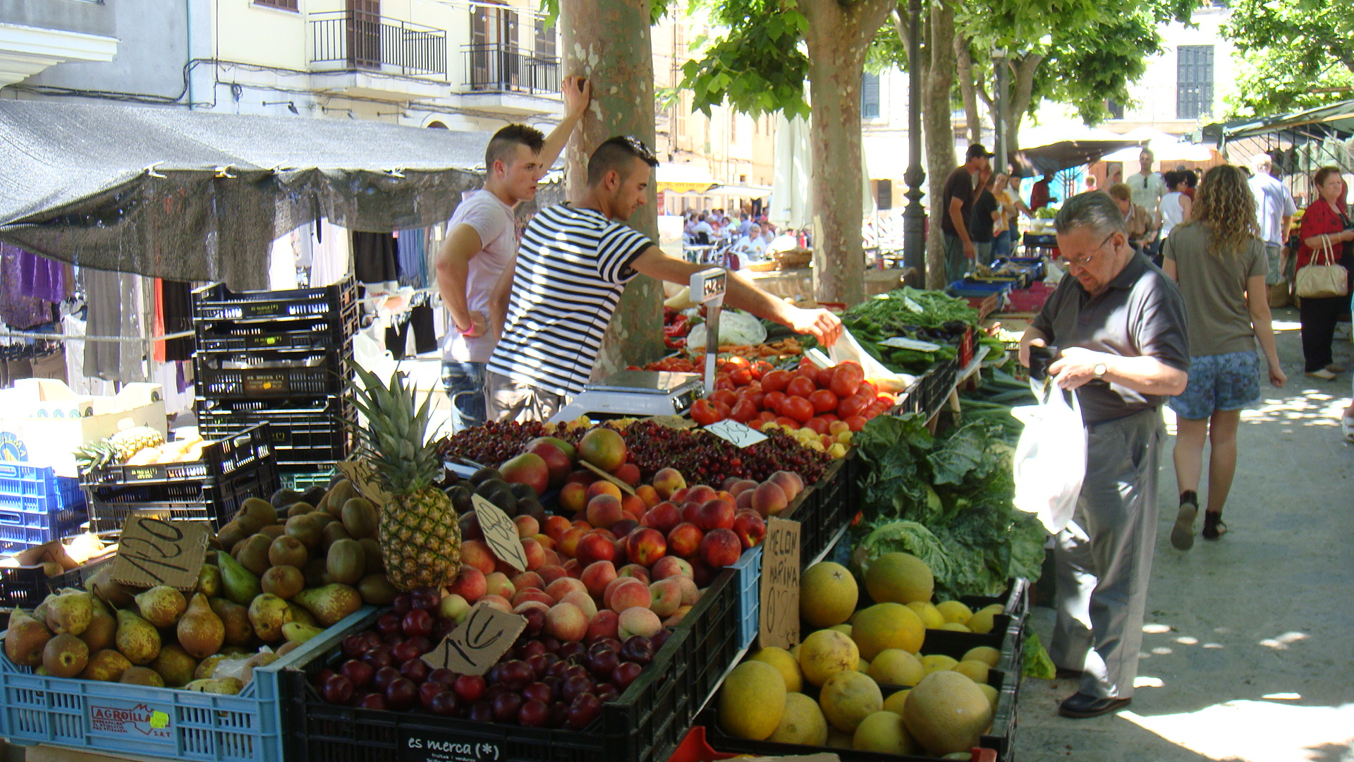Post Thumbnail of Mercado de Binissalem en Mallorca