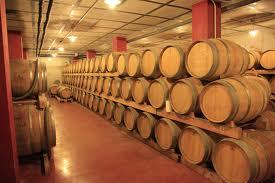 ruta vinos mallorca