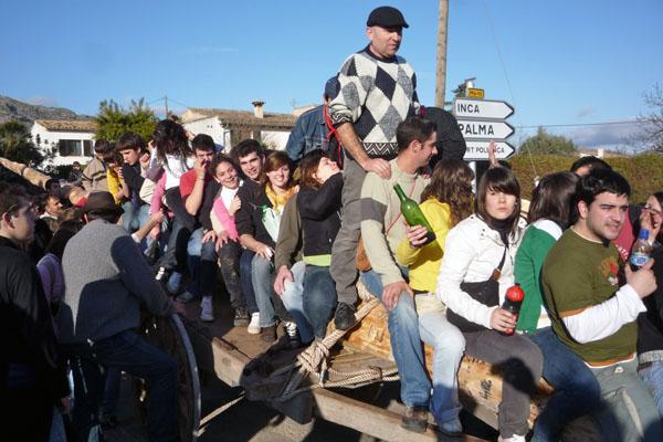 Sant Antoni en Pollensa: el pino de Ternelles
